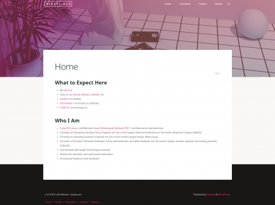 WordPress Theme – Binary_Nights